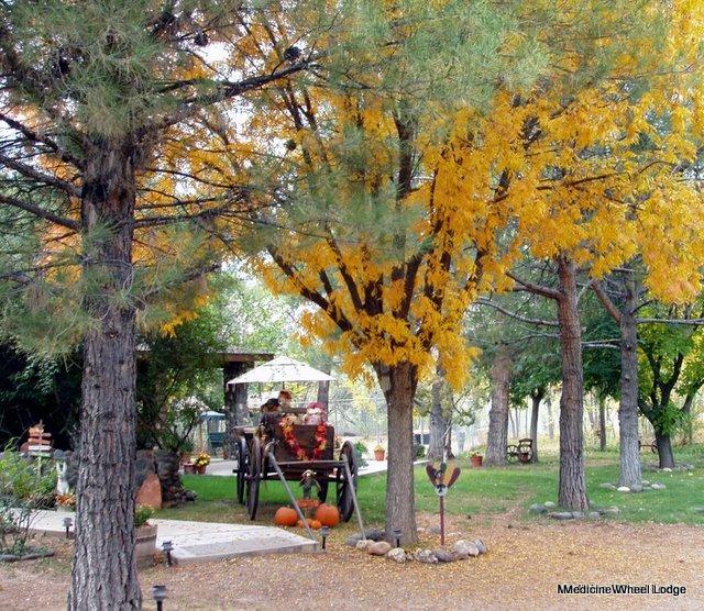 Fall-Wagon_01